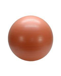 Gymboll 55cm