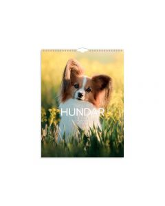 Stora Hundkalendern - 1777