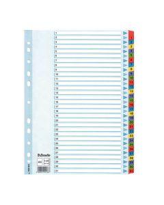 Register Mylar A4 1-31 multifärgat